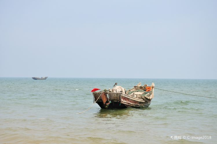 Rizhao Seaside National Forest Park2