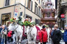 在佛罗伦萨参加复活节庆典,木车燃烟花前所未闻