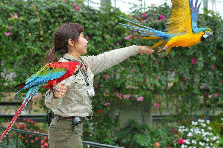 Kobe Animal Kingdom2