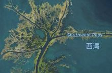 探访密西西比河之旅一:入海口的启程感悟:顺应自然是最佳生存之道