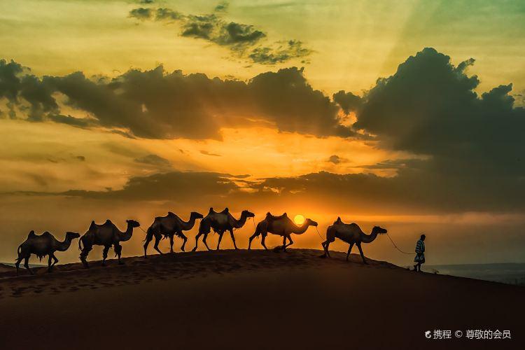 庫木塔格沙漠3
