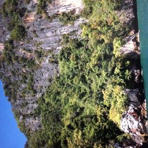 维京洞穴旅游景点攻略图