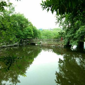八一公园旅游景点攻略图