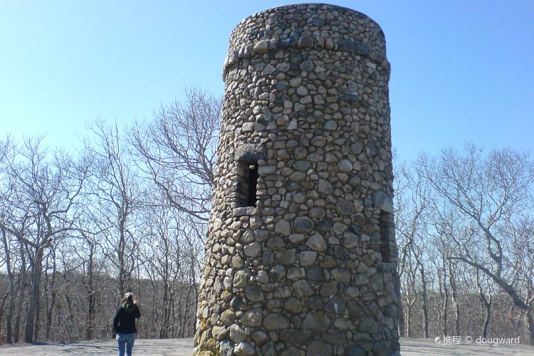 Scargo Tower