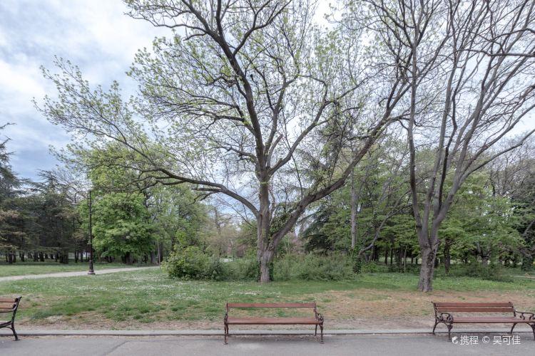 Primorski公園4