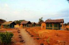 小天独家,东非安博塞利国家公园