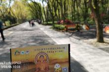 宁波周边游 | 新昌大佛寺风景区虔诚礼佛,嵊州王羲之故居拜读大作。