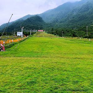 西岭雪山风景区旅游景点攻略图