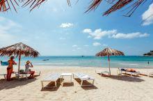 畅游美丽的苏梅岛,体验豪华别致的泳池别墅