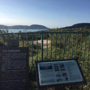 庙子湖岛旅游景点攻略图