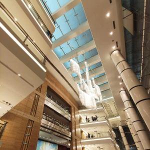 上海大剧院旅游景点攻略图