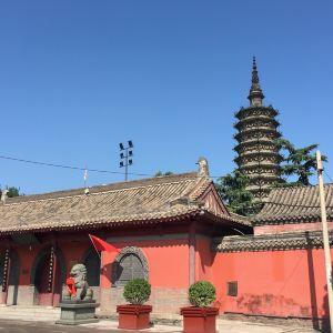 临济寺澄灵塔旅游景点攻略图