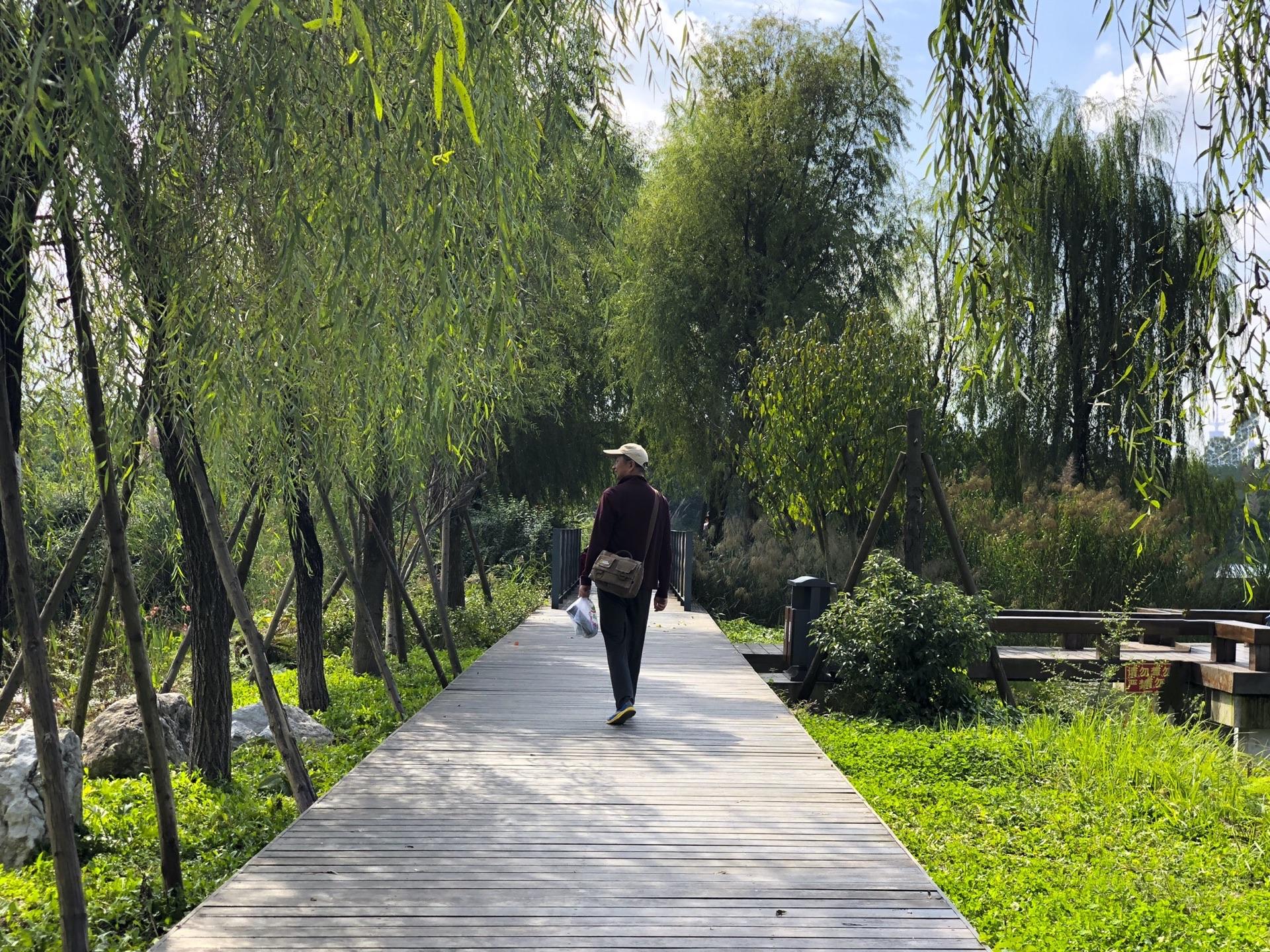 成都青龙场交通规划_成都青龙湖好玩吗,成都青龙湖景点怎么样_点评_评价【携程攻略】
