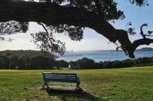 跟着电影《只有芸知道》开启新西兰南北岛10日游