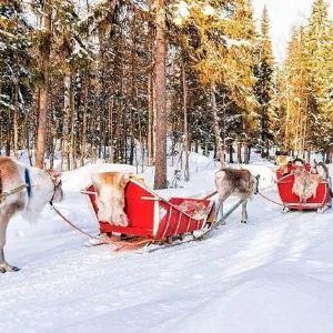 圣诞老人村旅游景点攻略图