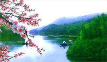 桃花源旅游景点攻略图