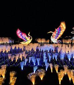 [西安游记图片] 【西安】繁华未央,迷失在千年古都的夜色中