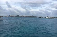 马尔代夫阿玛瑞岛,畅寻椰林树影、水清沙白