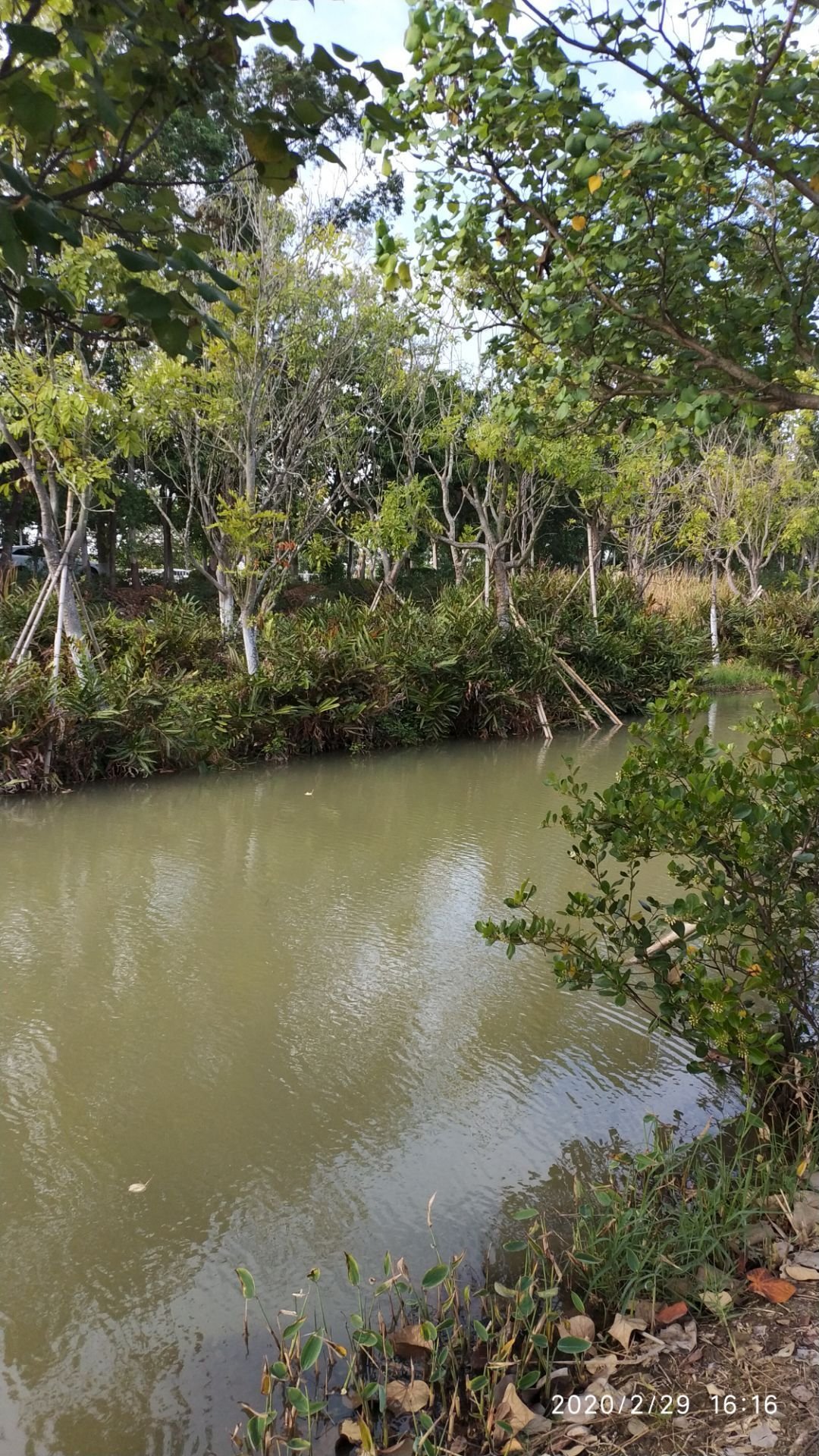 广州去南沙湿地公园_广州南沙湿地公园二期攻略,广州南沙湿地公园二期门票/游玩攻略 ...