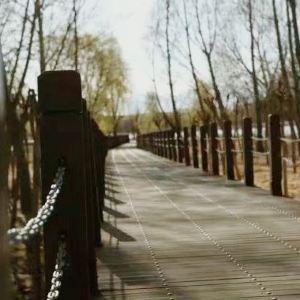 拉鲁湿地自然保护区旅游景点攻略图