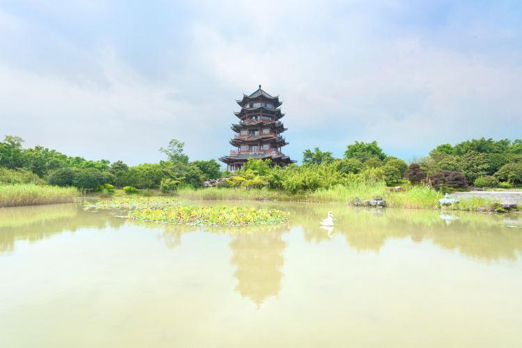 桂林園博園