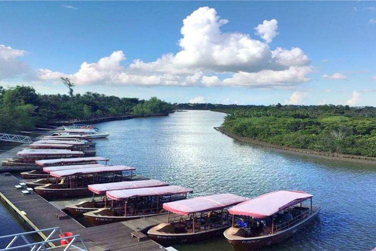 東寨港紅樹林保護区