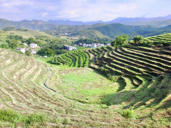 Pingshan Terraced Tourist Area