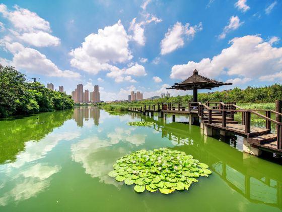 Qianguan Wetland Park