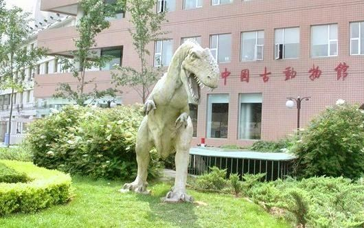 The Paleozoological Museum of China