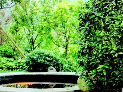 Hot Spring of Tianzhan Mingren Spa Vacation Hotel