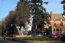 漫步华盛顿大学