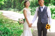 夏威夷欧胡岛 森林里的婚纱照