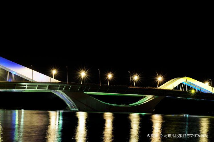 謝赫紮耶德大橋4