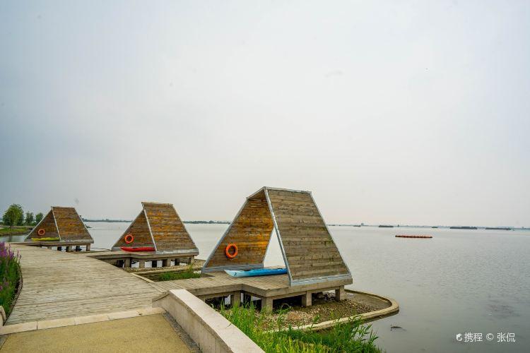 Dazong Lake Wetland4