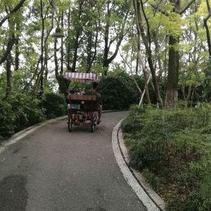 桃花岛旅游景点攻略图