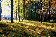 """你末见过的秋色昆明          """"一年一度秋风落,漫山红叶秋意浓"""",当秋风不经意间拂过红土高原"""