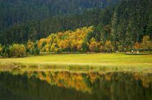 大美香格里拉          香格里拉是一片神奇的土地,那绚烂的风光,圣洁的雪山,迷人的风情,无时