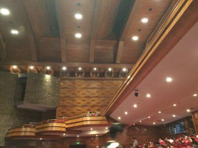 Binhu Theater