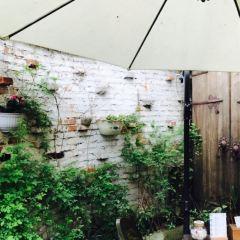 春樹下花園餐廳(中隱於市店)用戶圖片