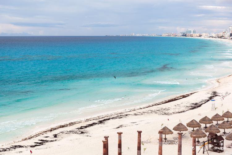 Playa Marlin1