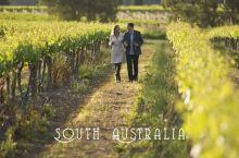 那个即将跟随我们出发前往南澳的幸运儿诞生了!让我们一起期待精彩行程吧!