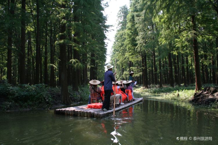 Lizhong Water Forest Park2