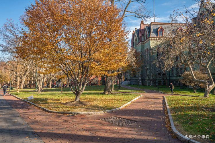 펜실베니아 대학교1
