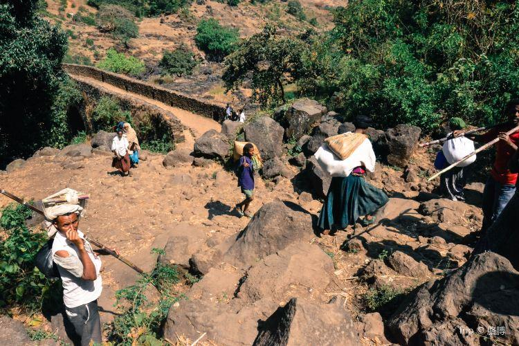 Blue Nile Falls3