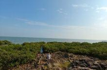 防城港红树林保护区航拍