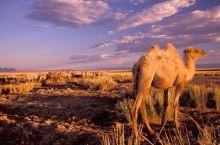 世界上让人醉心的沙漠这么多,可不止三毛的撒哈拉
