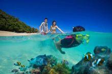 亲子游 | 12天,这个暑假,带孩子去澳洲遇见星空海洋