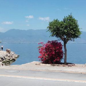 环洱海旅拍旅游景点攻略图