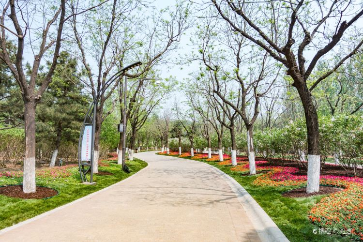 Grand Canal Forest Park2