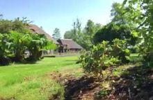 美丽的荷兰羊角村